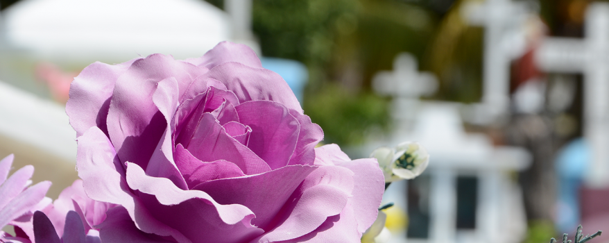 Low Cost Funerals - Common Questions Answered