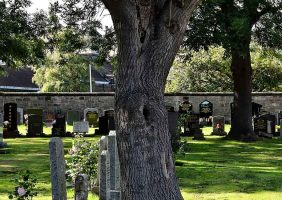 Find-A-Cemetery-Checklist-For-All-Australians_Sydney-Coffins